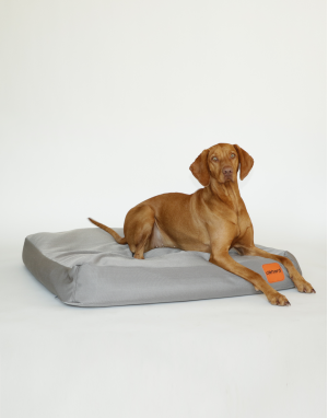coussin pour chien malléable et résistant