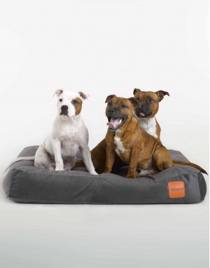 dogs' bed, natural filling, durable, anti-odor and anti-flea