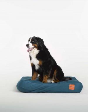 coussin pour chien haut de gamme, 100% naturel, respectueux de l'odorat du chien, assainissant