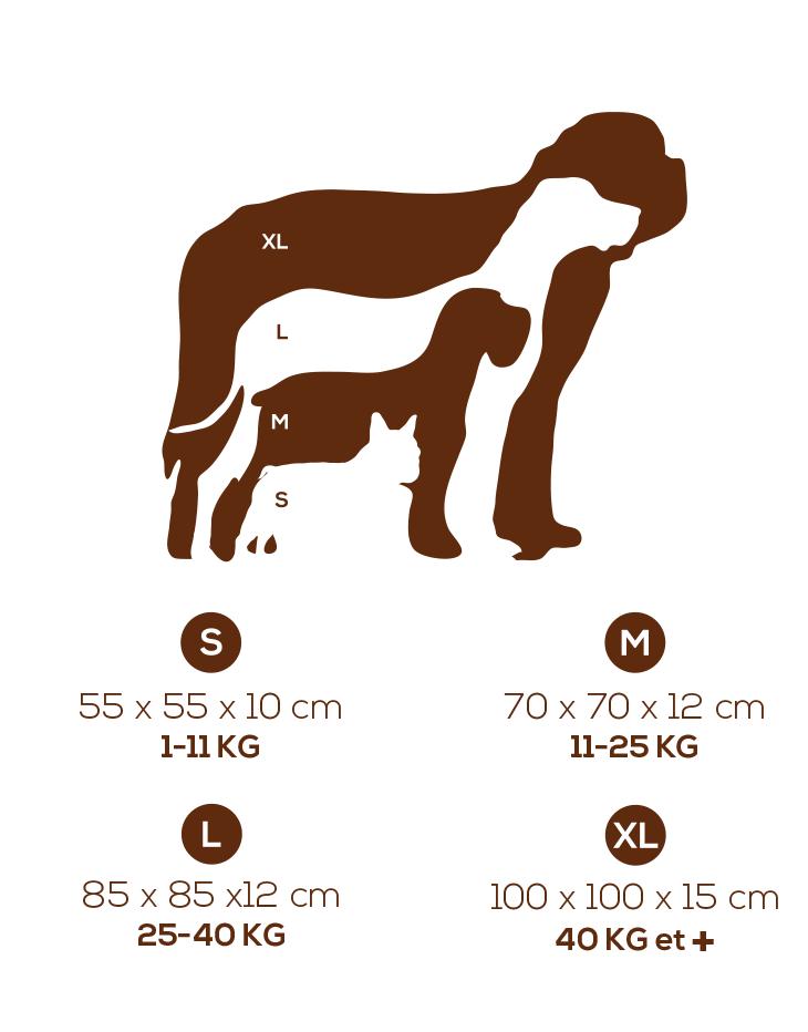 tailles coussin pour chien