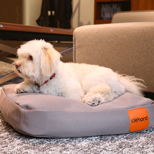 coussin pour chien ultra confortable