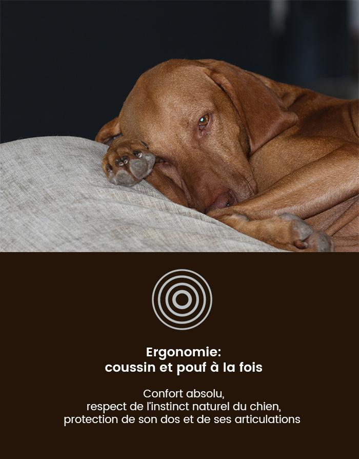 Coussin pour chien orthopédique, ergonomique et confortable