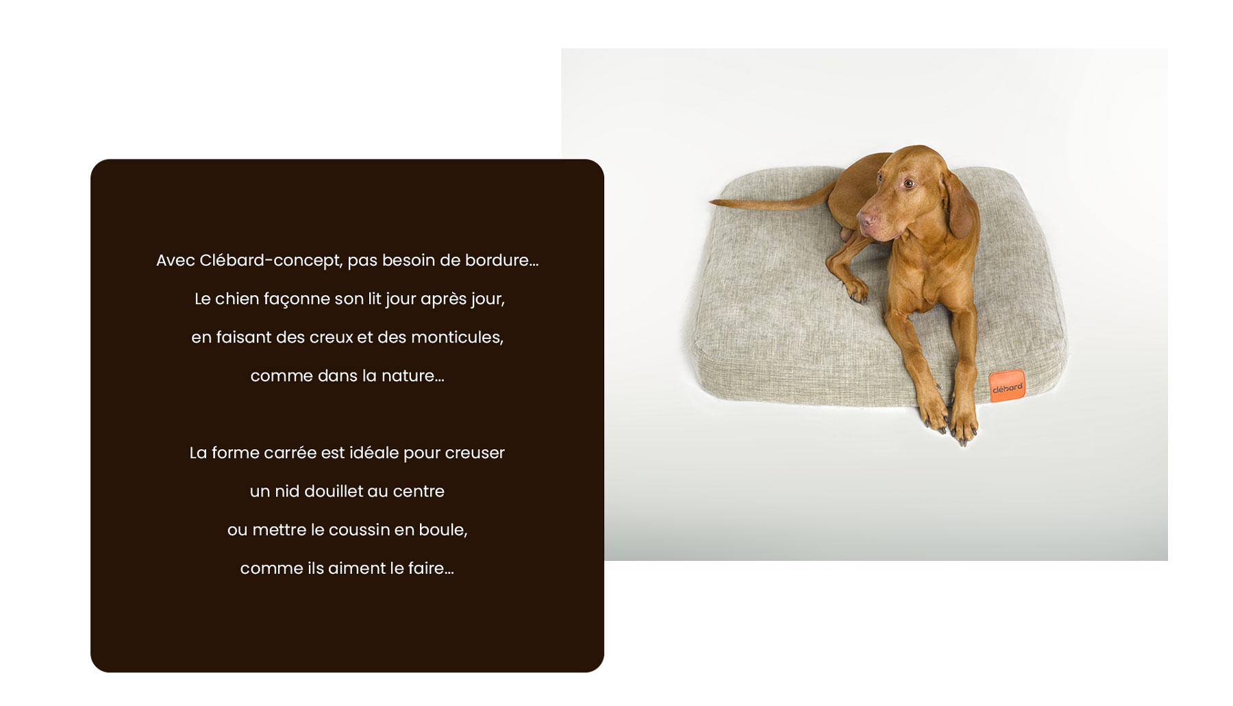coussin pour chien forme idéale sans bordure