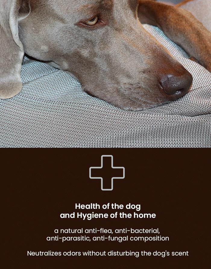 dog\'s cushion hypoallergenic, anti-flea, anti-bacteria, anti-odor